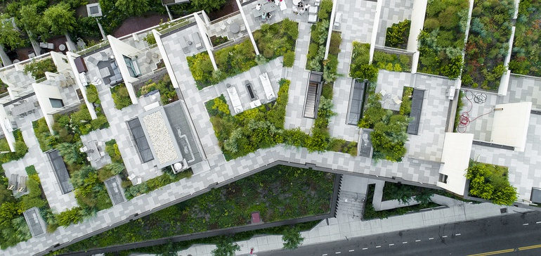 NYC's roofs are getting a sustainable makeover