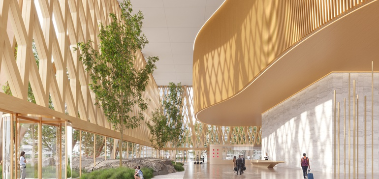 Mass timber reaches for new heights to unlock zero-carbon cities